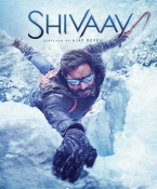 Shivaay Hindi DVD